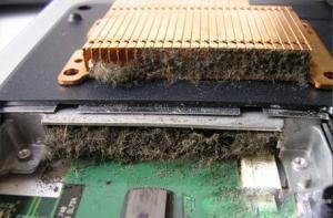 Вы уже больше года не производили чистку системы охлаждения Вашего ноутбука?